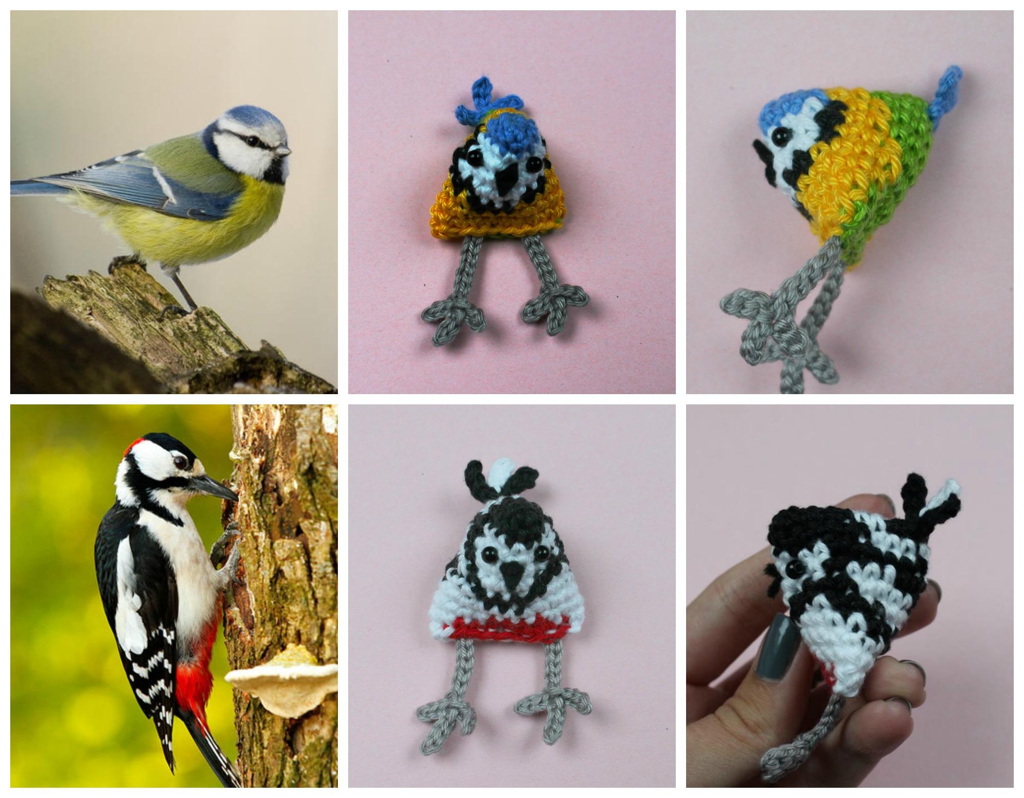 birdycollage2
