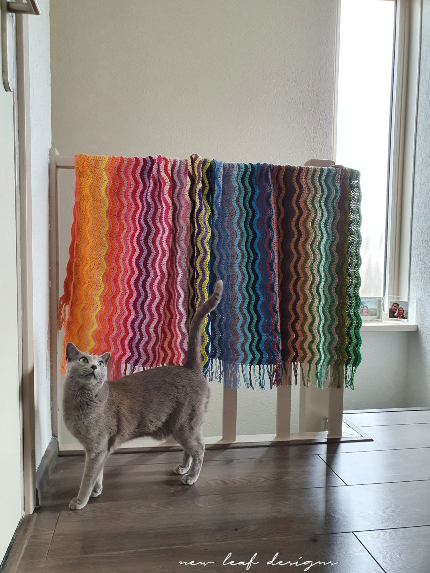 rainbow sea waves blanket hanging over staircase railings with cat in front